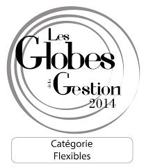 07-globes-de-la-gestion.png